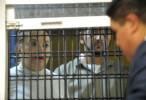 Muere testigo protegido del caso Gordillo