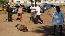 Suman dos ejecutados más este domingo en Culiacán