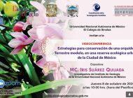 El Colegio de Sinaloa invita a conferencia sobre conservación de orquídeas