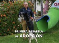 Gerardo Vargas invita a la Primera Semana de Adopción Canina