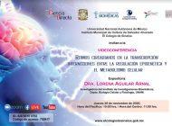 Lorena Aguilar Arnal expondrá sobre la importancia de los ritmos circadianos